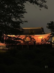上野美術館.jpg